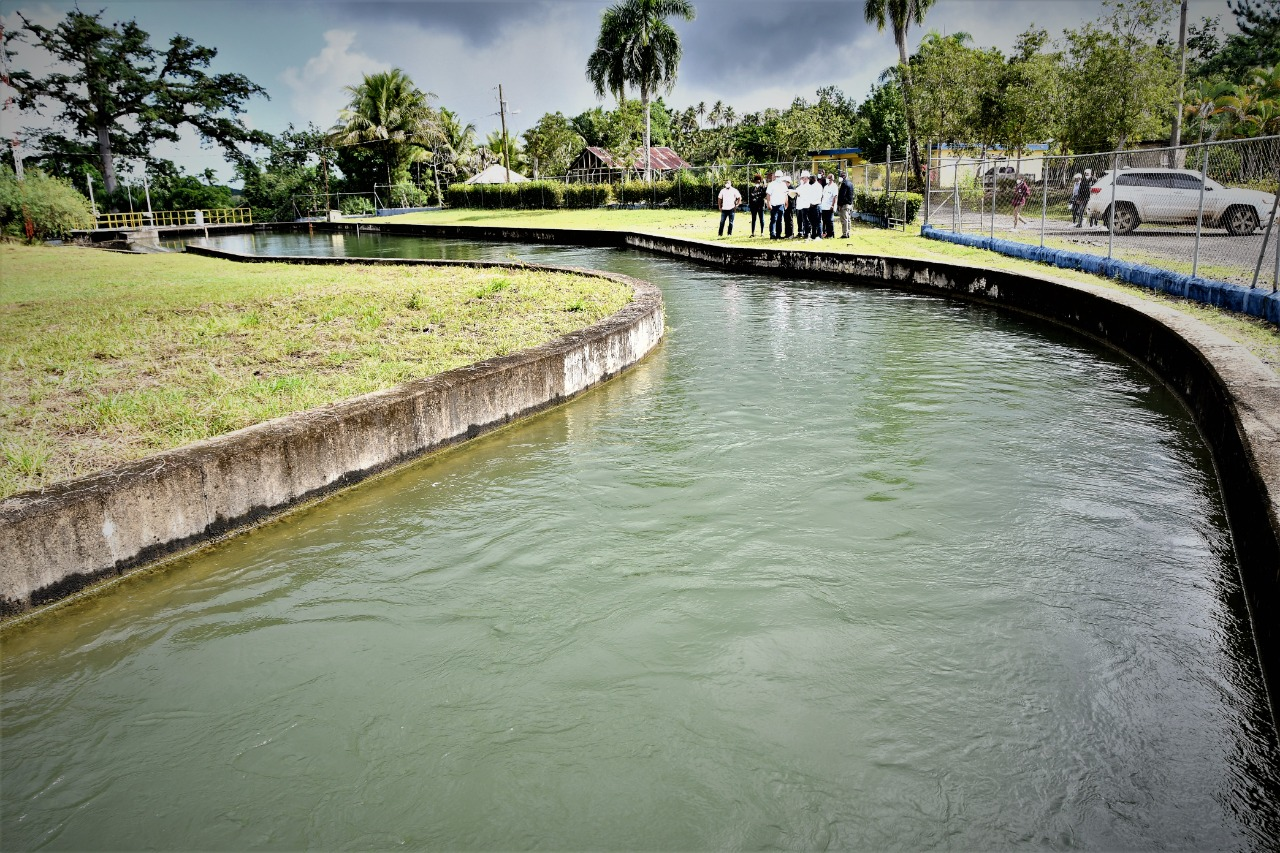 [:es]EGEHID reevalúa factibilidad de hidroeléctrica sobre el río Boba para producir 25 megavatios[:]