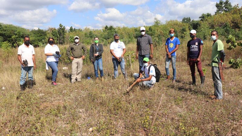 Desarrollan segunda Jornada Reforestación Roblillo