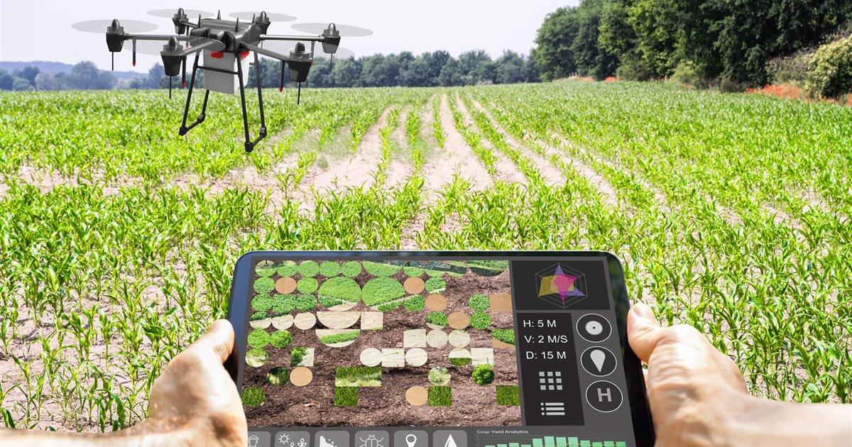 La agricultura digital, nuevas fronteras para el sistema alimentario