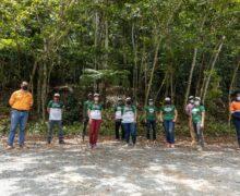 Desarrolla GB Energy Texaco jornada reforestación en Cerro Maimón